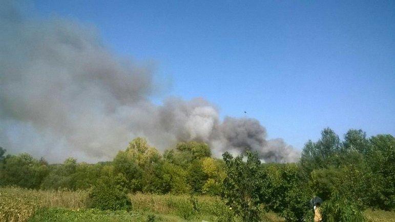 Горит лес в Харьковской области - фото 1