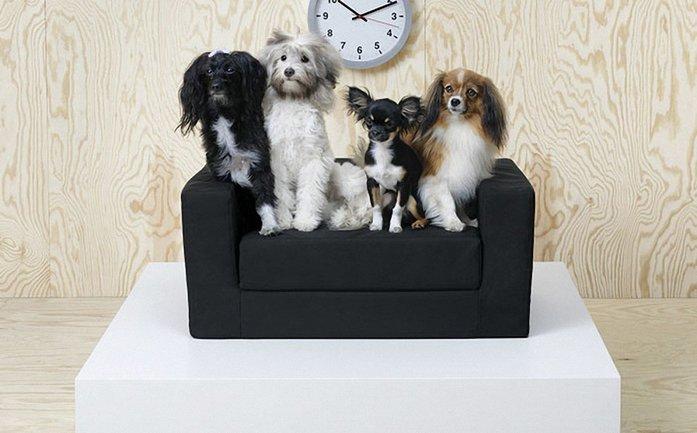 IKEA решила обустроить жизнь домашних животных - фото 1