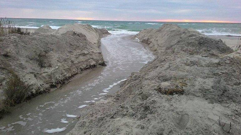 Вода из лимана стремительно потекла в море  - фото 1