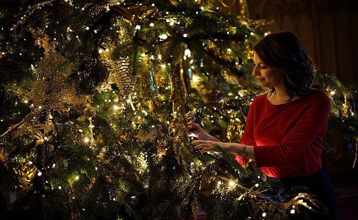 К Рождеству готовы: королевская семья украсила Виндзорский замок - фото 1