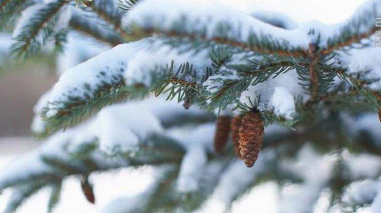 Погода в Украине начнет портиться к 9 января - фото 1