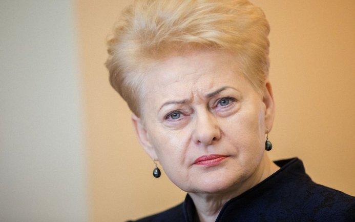 Грибаускайте не исключает высылку российских дипломатов - фото 1