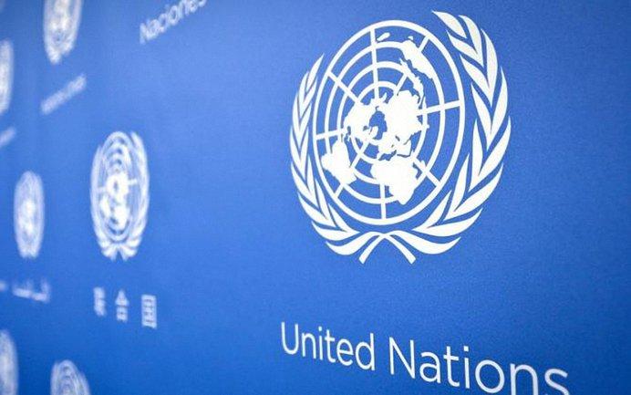 В ООН осудили выборы Путина в Крыму - фото 1