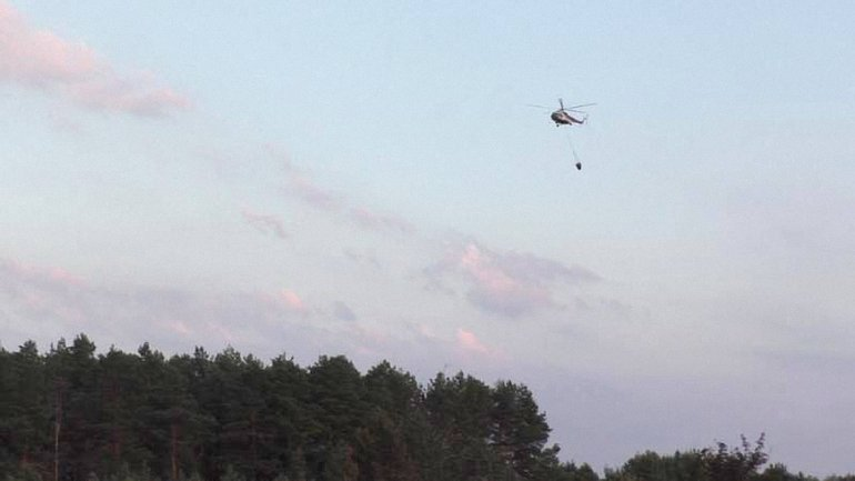 В Черниговской области горит лес - фото 1
