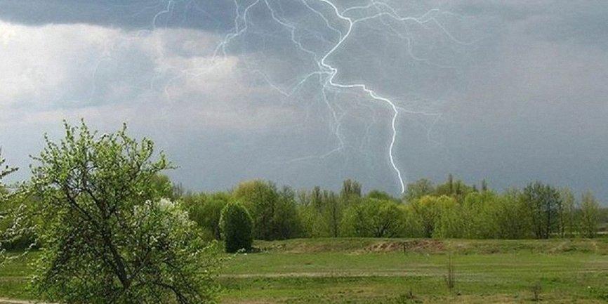 Погода в Украине: сильные дожди, град и шквалы ветра - фото 1