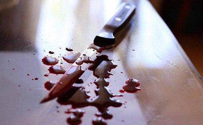 На Львовщине 13-летняя девочка во время ссоры убила отца - фото 1