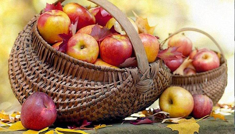 Яблочный Спас 2021: что нужно святить в церкви - фото 1