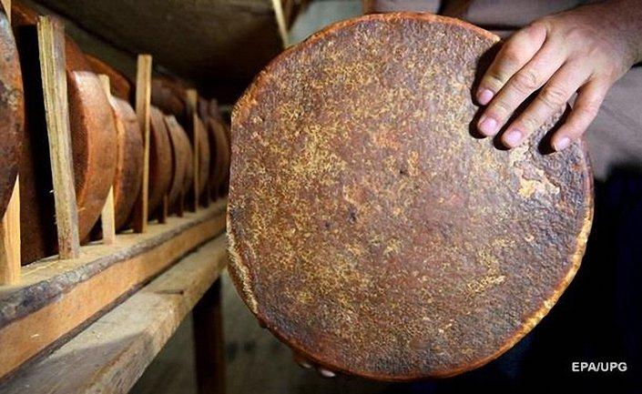 В египетской гробнице нашли сыр, которому более 3 тысяч лет - фото 1