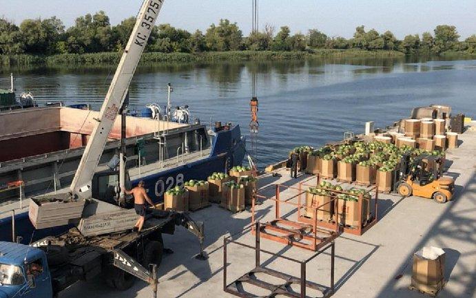 В Киев отправилась баржа с 500 тоннами арбузов - фото 1