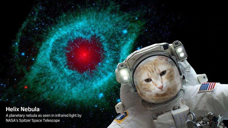 NASA создало приложение для селфи в космосе - фото 1