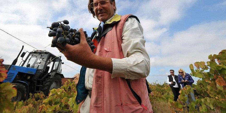 Французский винодел Кристоф Лакарен - фото 1