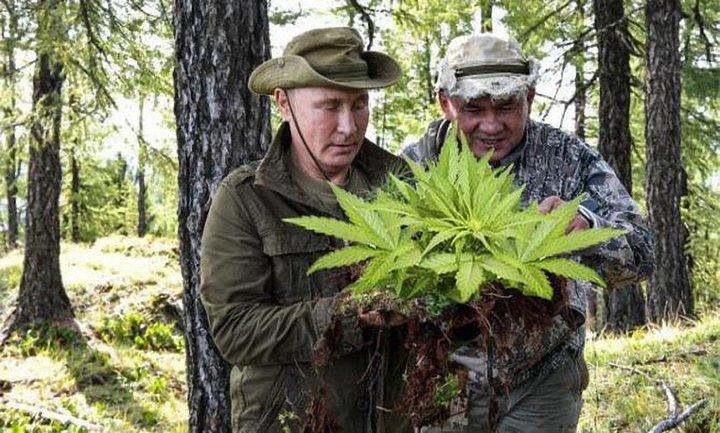Очень скоро за распространение этих фото россиян начнут сажать. Возможно, на бутылки - фото 1