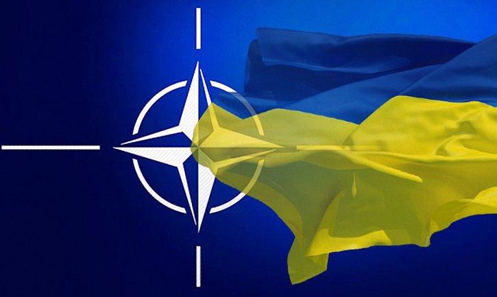 Украина и НАТО продолжат сотрудничество - фото 1
