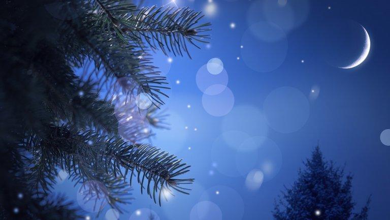 Снег в новогоднюю ночь будет в большинстве областей Украины - фото 1