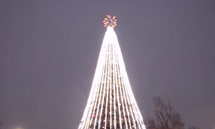"""Новогоднего """"Тарзана"""" из Борисполя могут посадить (ВИДЕО) - фото 1"""