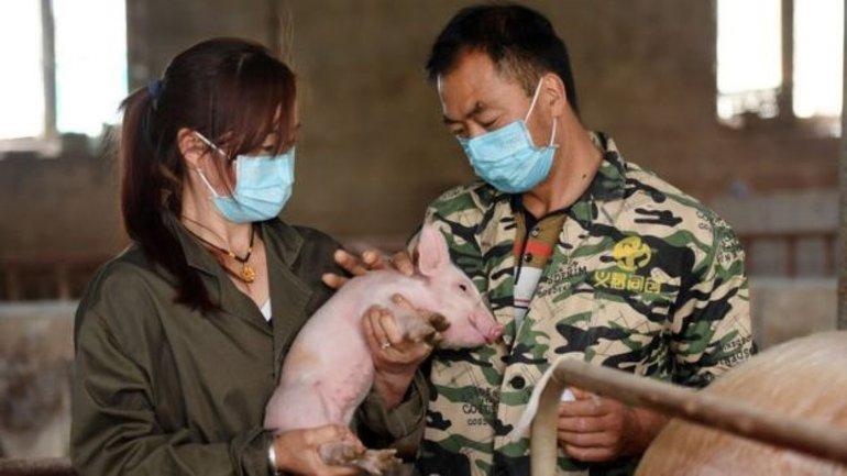 В Китае выявили новый вирус: Он может привести к еще одной  пандемии - фото 1