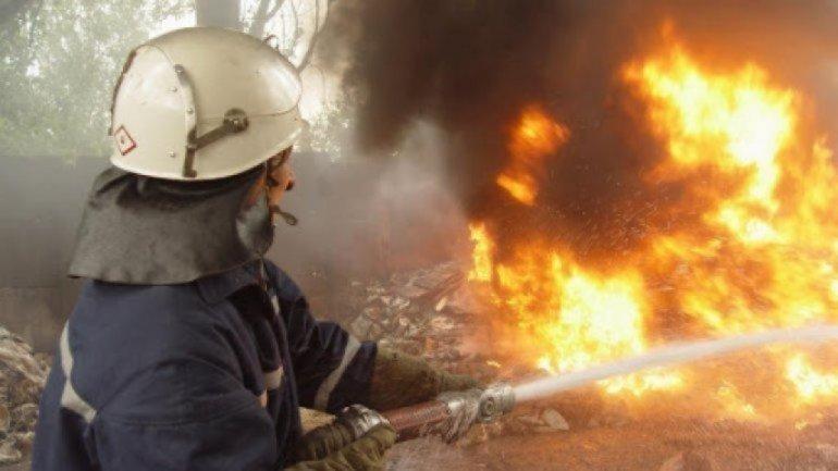 На Луганщине пылают масштабные пожары: Пламя тушат сотни пожарных - фото 1