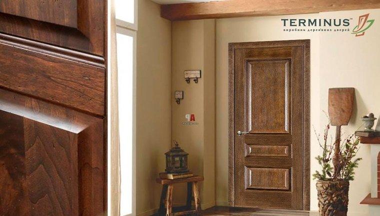 Межкомнатные двери - какой материал выбрать? - фото 1